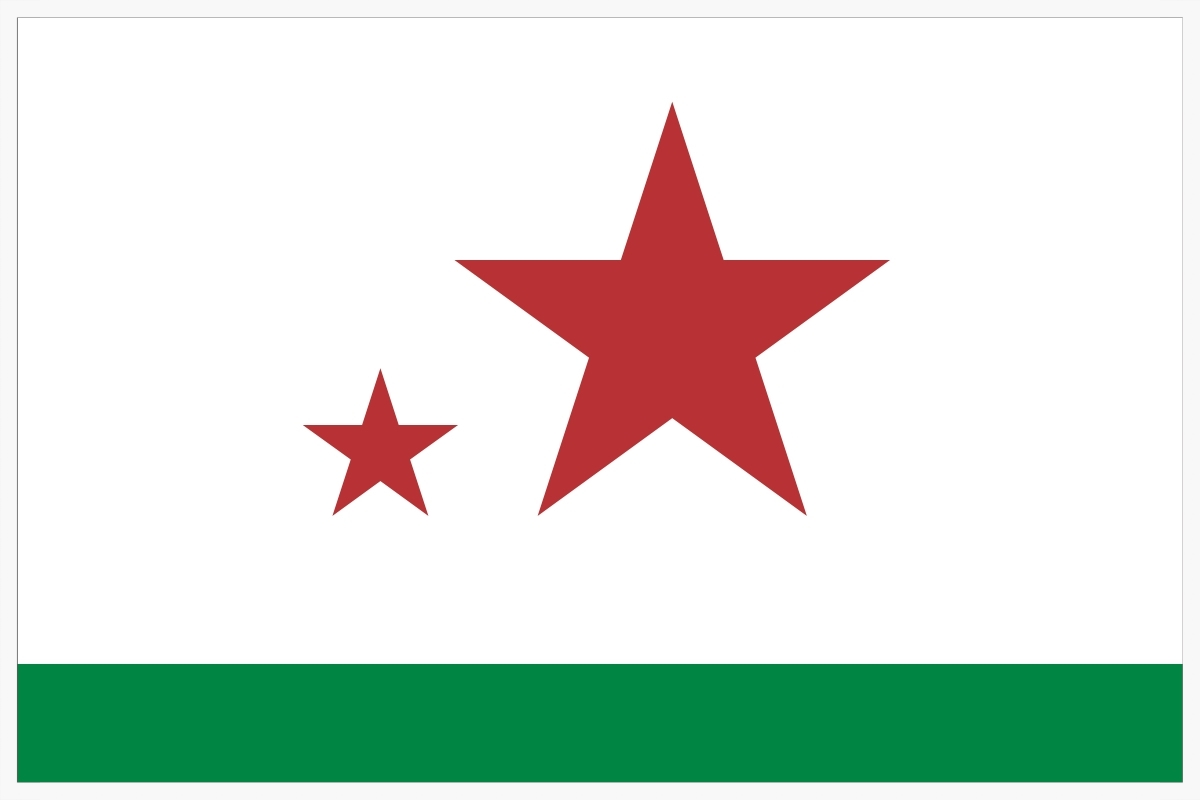 The Flag of Davis California.001.jpg