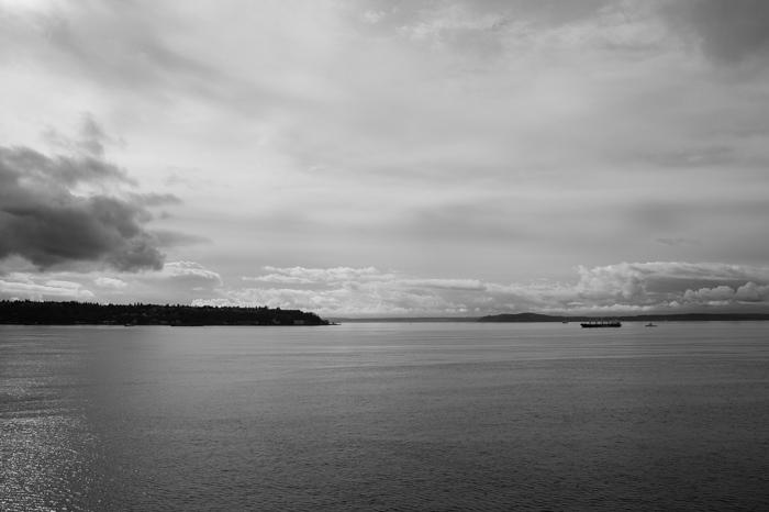 Elliott Bay, Puget Sound