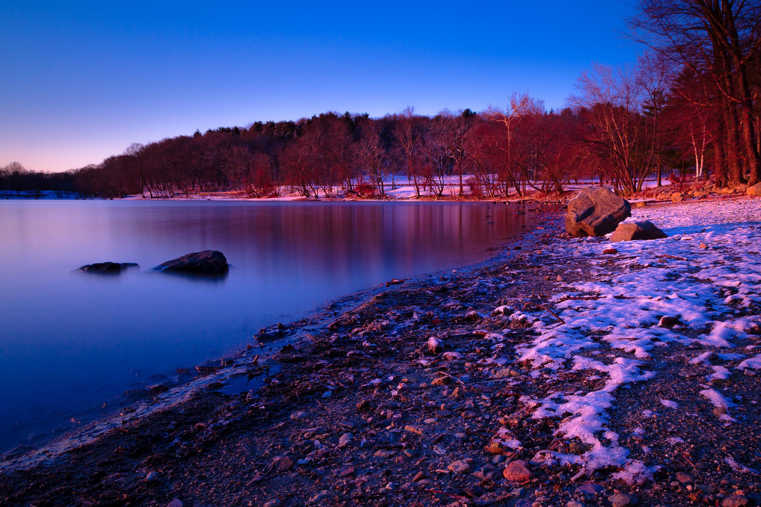 Jamaica Pond sunrise shore.jpg