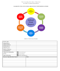 16_17 review report template.PNG