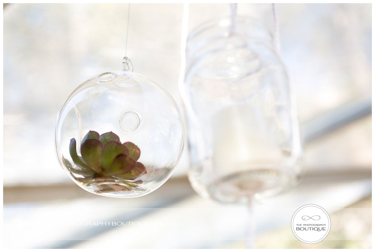 succulents as wedding styling