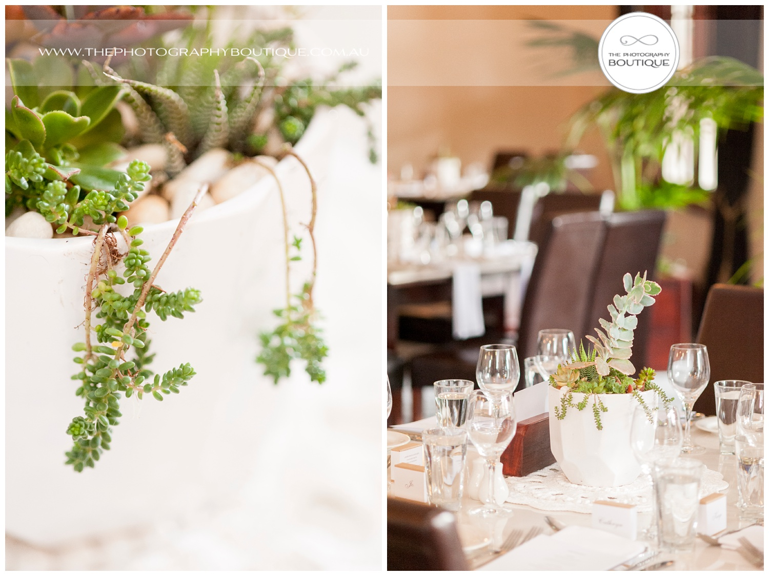 Succulent wedding centrepieces at Caves House Yallingup