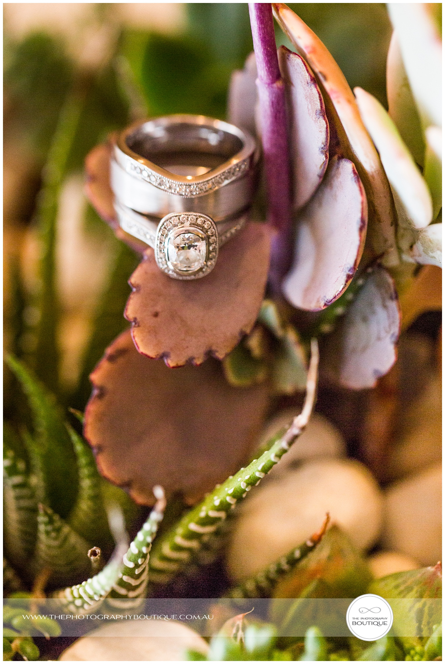 wedding rings in succulent plant centrepieces at Caves House Yallingup