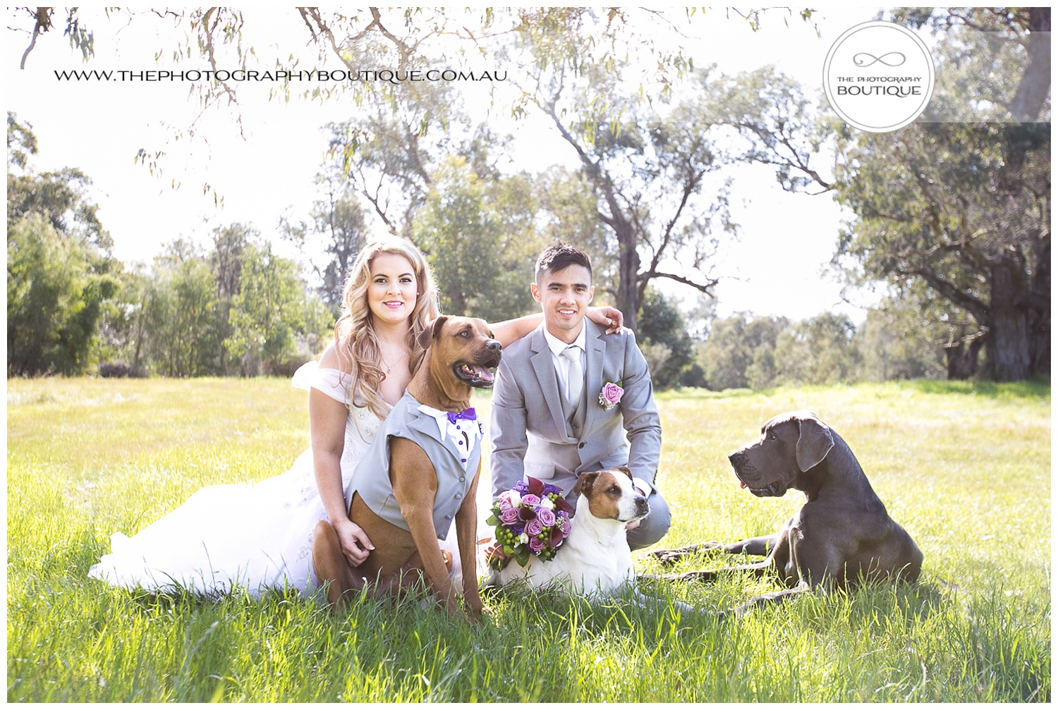 bride and groom with their dogs at Bunbury wedding
