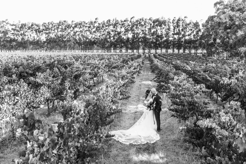 Black Brewing Co Margaret River Wedding Photographer-43.jpg