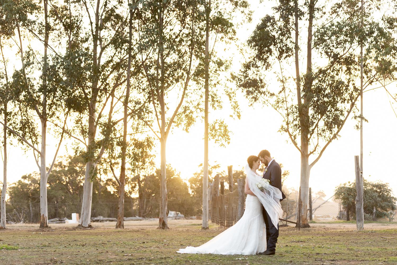 Harvey Dickson's Country Music Centre Boyup Brook Wedding Photography-312.jpg