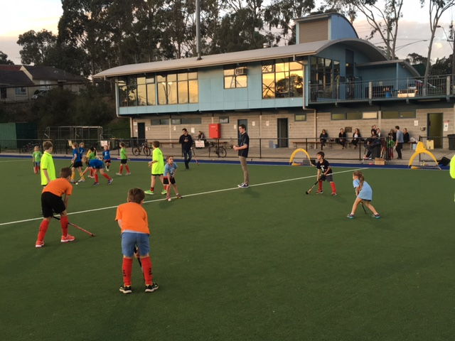 TEM Under 8s games Friday evening on H1