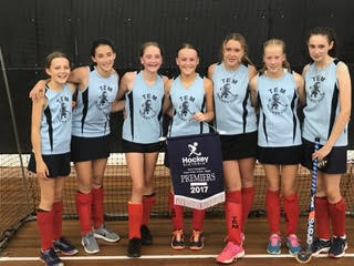 2017 - U15 Girls Indoor Shield