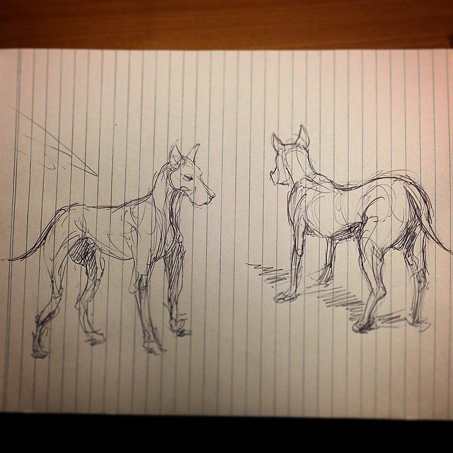 #woof #dog #study #artstation #drawing #illustration #sketchbook #bark