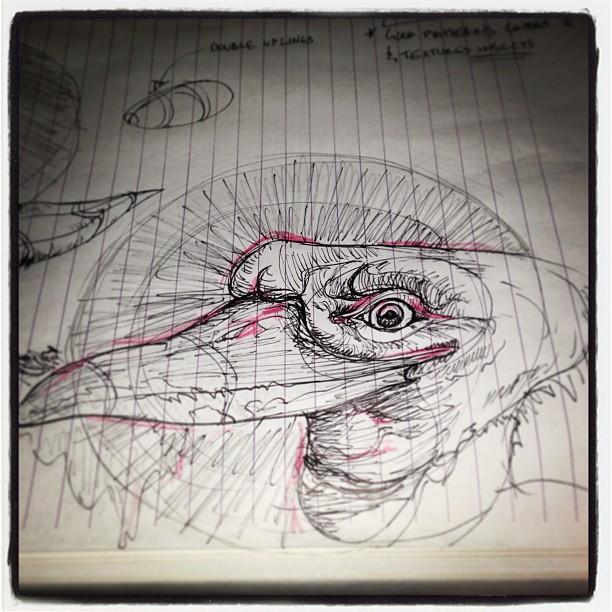 #bird #art #illustration #drawing