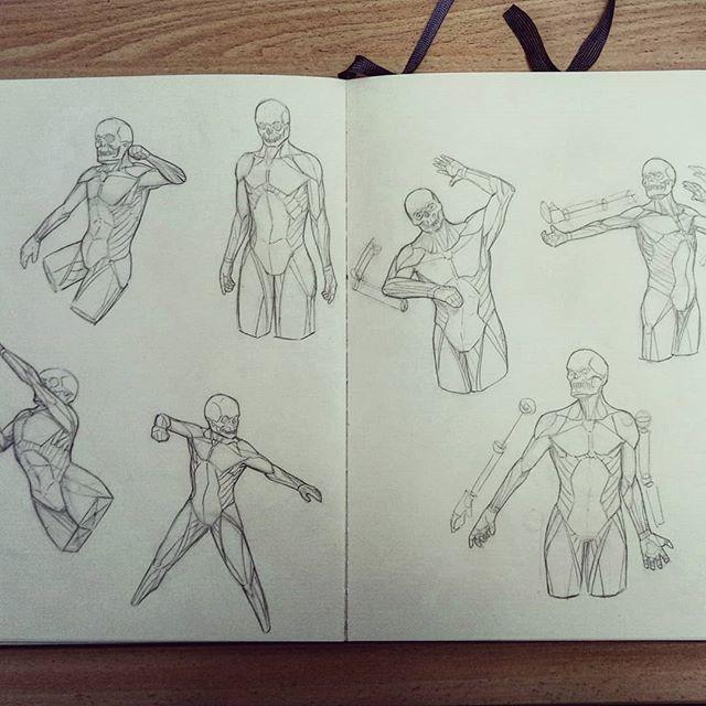 #anatomy #turnaround #pose #arms #hands #torso #artworks #art #drawing #sketchbook #sketch #study #illustration #instaart #picoftheday #anatomyart #dailysketch #asketchaday #draweveryday #muscles #artbook