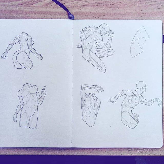 #anatomy #hands #pose #arms #torso #artworks #art #drawing #sketchbook #sketch #study #illustration #instaart #picoftheday #anatomyart #dailysketch #asketchaday #draweveryday #muscles #artbook #artistsoninstagram #2019