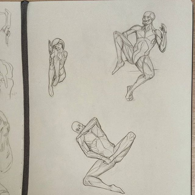 #anatomy #drawing #sketchbook #sketch #study #art #illustration #instaart #picoftheday #anatomyart #anatomystudy #pose #malemodel #dailysketch #asketchaday #draweveryday #artworks #lunchtimesketch #muscles #man #male #female #femalemodel  #women