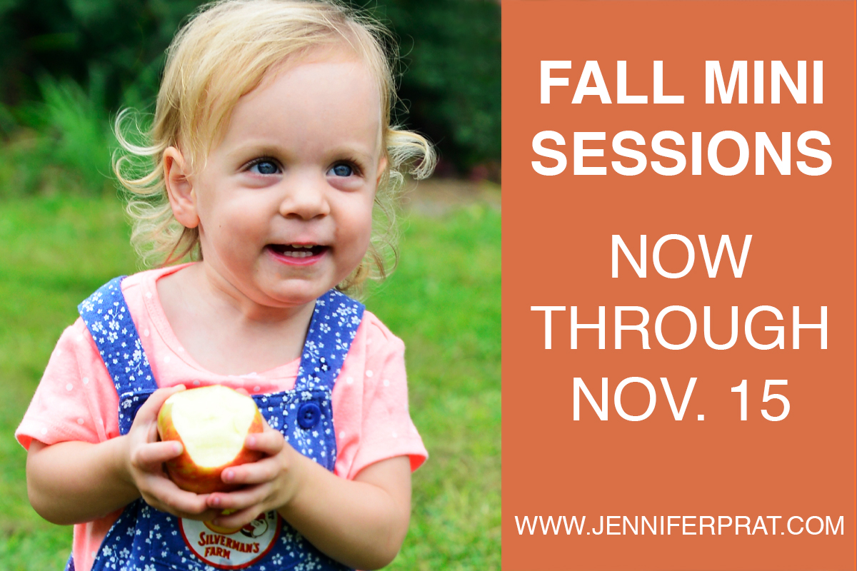 Fall Mini Sessions2.jpg