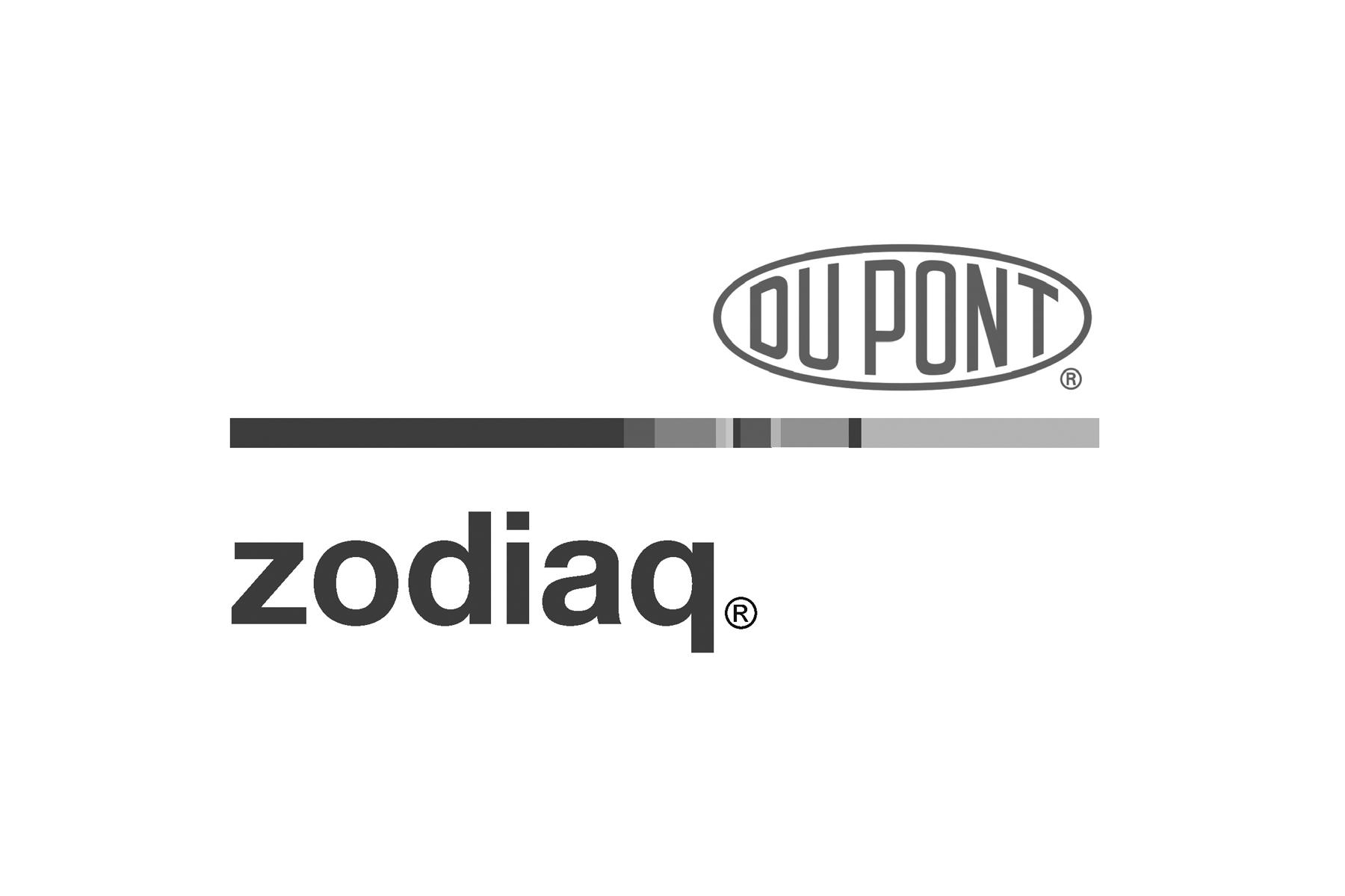 Zodiaq GS.jpg
