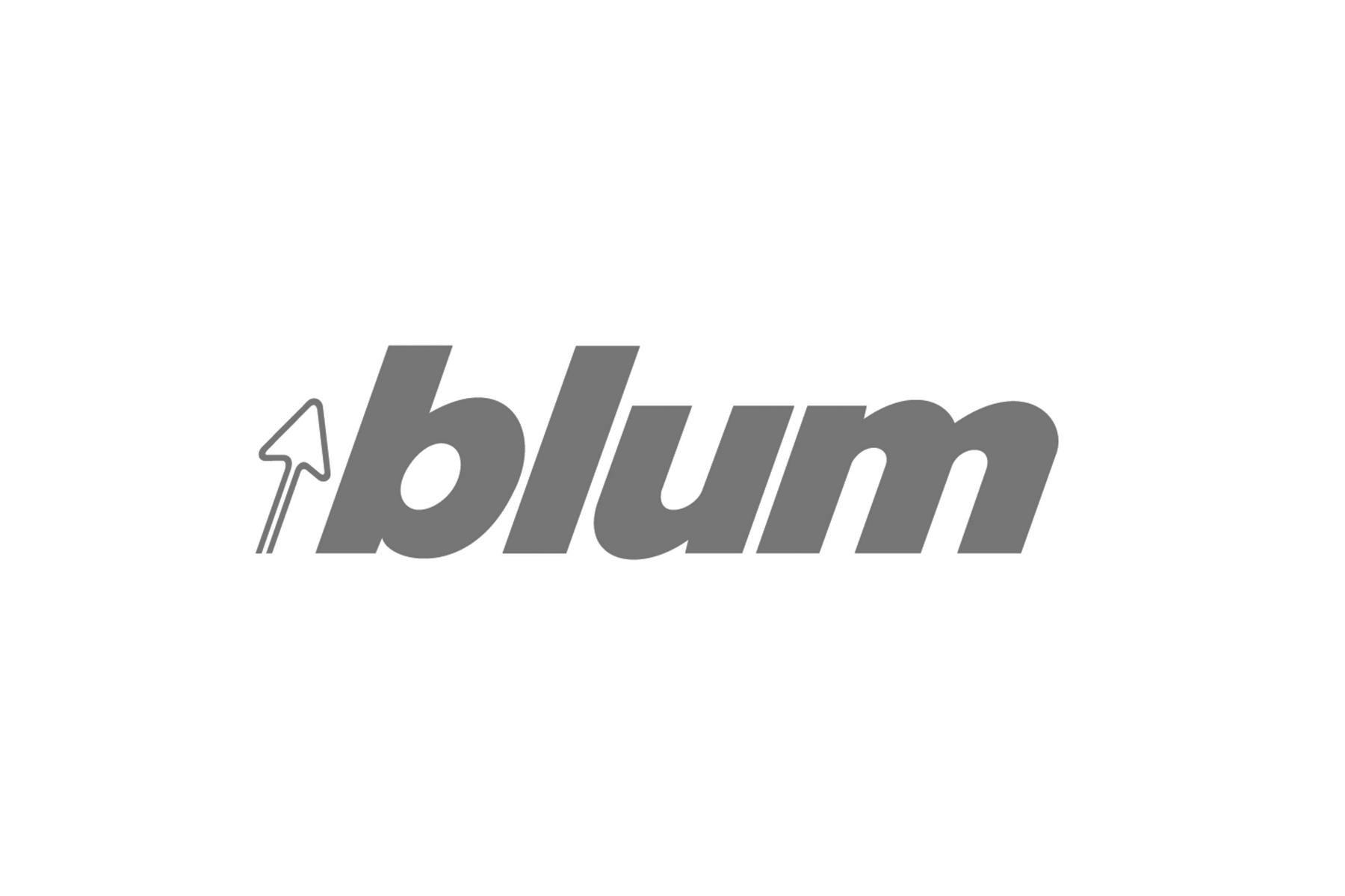 Blum GS.jpg