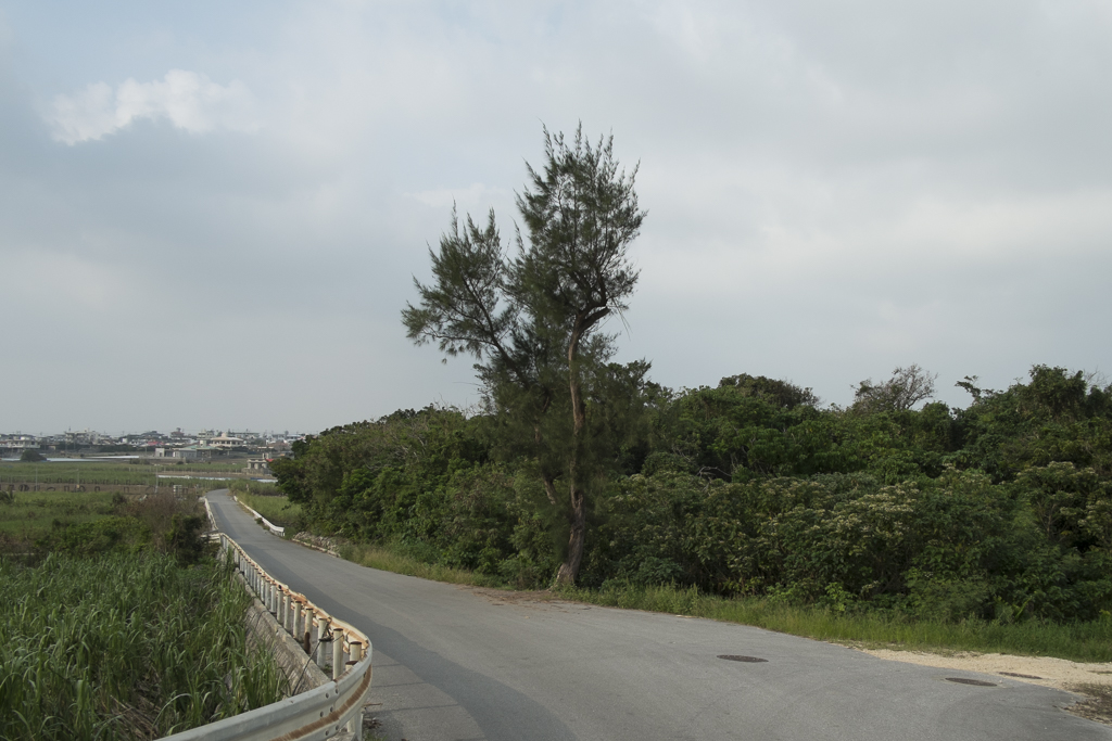 2014_Web_Postcards From Okinawa-4.jpg