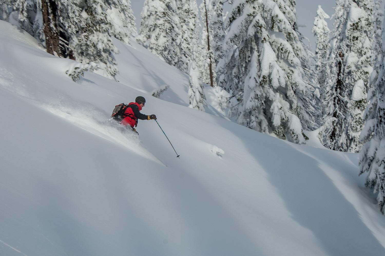 017-332_120202Heli_Skiing_Revelstoke.jpg