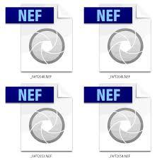 NEF.jpg
