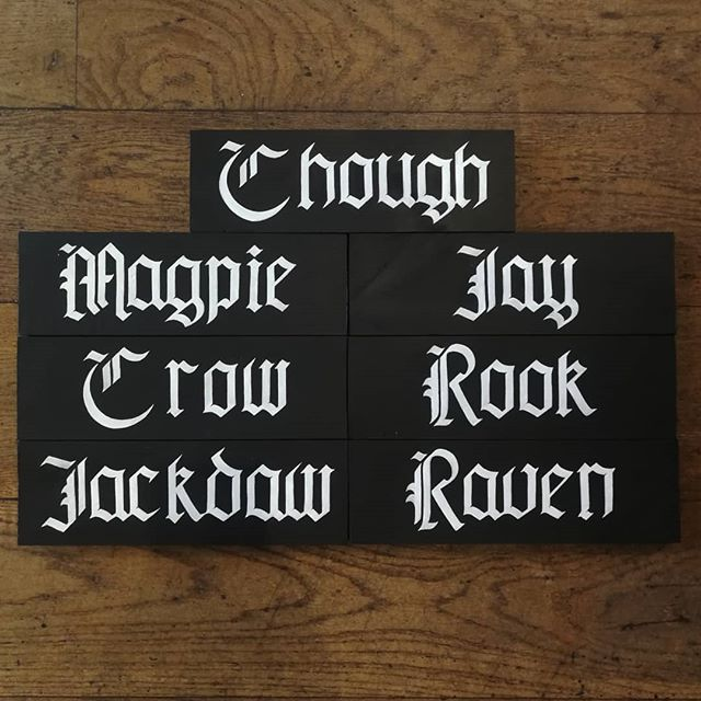 Finally all done with the signs for @thecrowinn be sure to check them out for incredible booze and a place to stay. . . . #calligraphy #writing #gothichand #handwriting #handstyle #formalwriting #blackletter #typography #signwriting #signs #crow #raven #chough #magpie #jay #jackdaw #rook #blackandwhite #whiteink #hotel #pub #uksignwriter #lettering #kerning #design #calligrapher