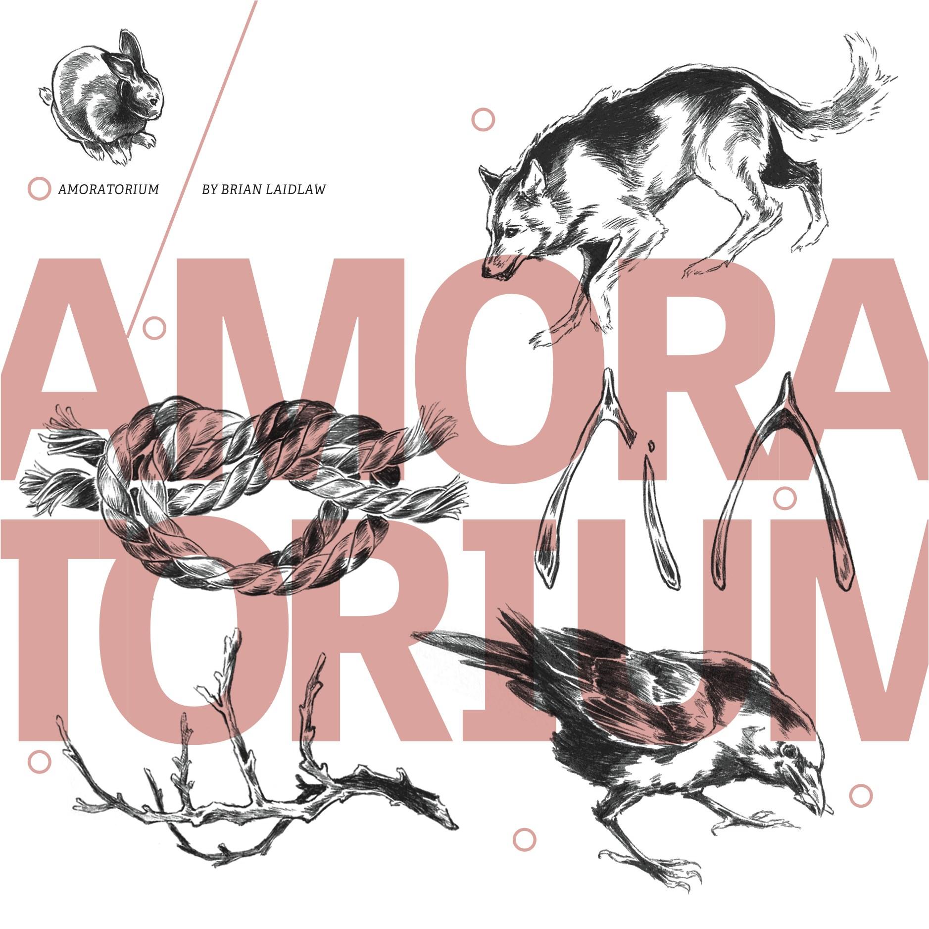 Amoratorium cover crop.jpg