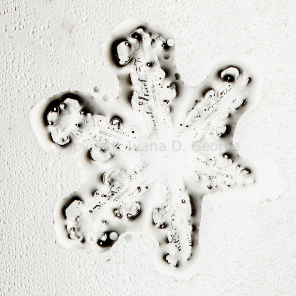 snowflakemelt2015-7.jpg