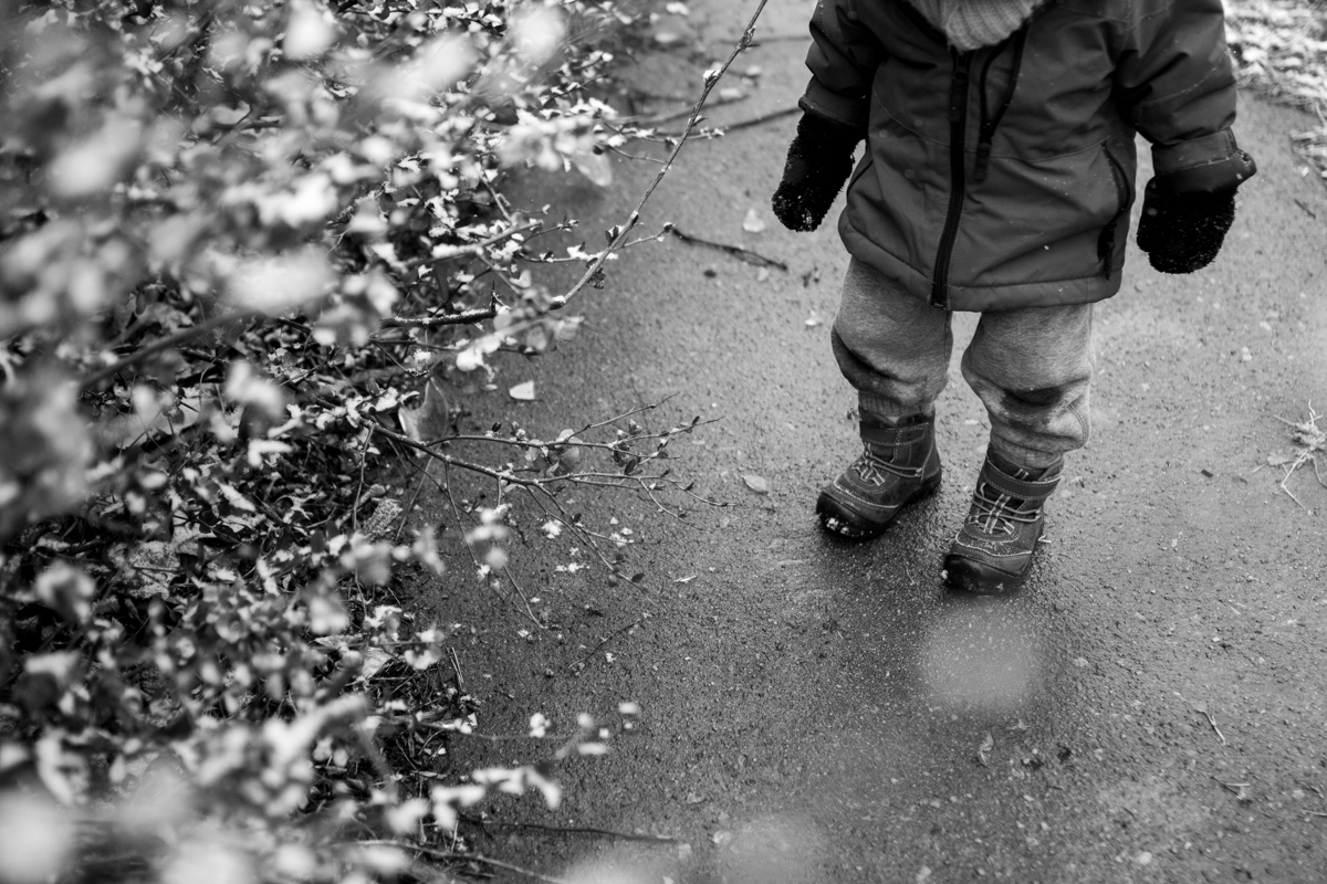 Kansas City, MO lifestyle family photographer toddler with spring flowers in the snow winter family photography black and white photography