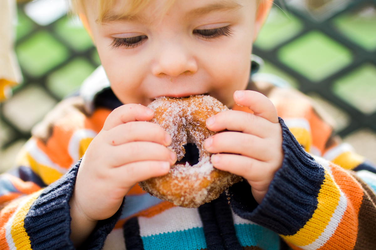 Kansas City family photographer toddler eating a donut Cider Hill Family Orchard
