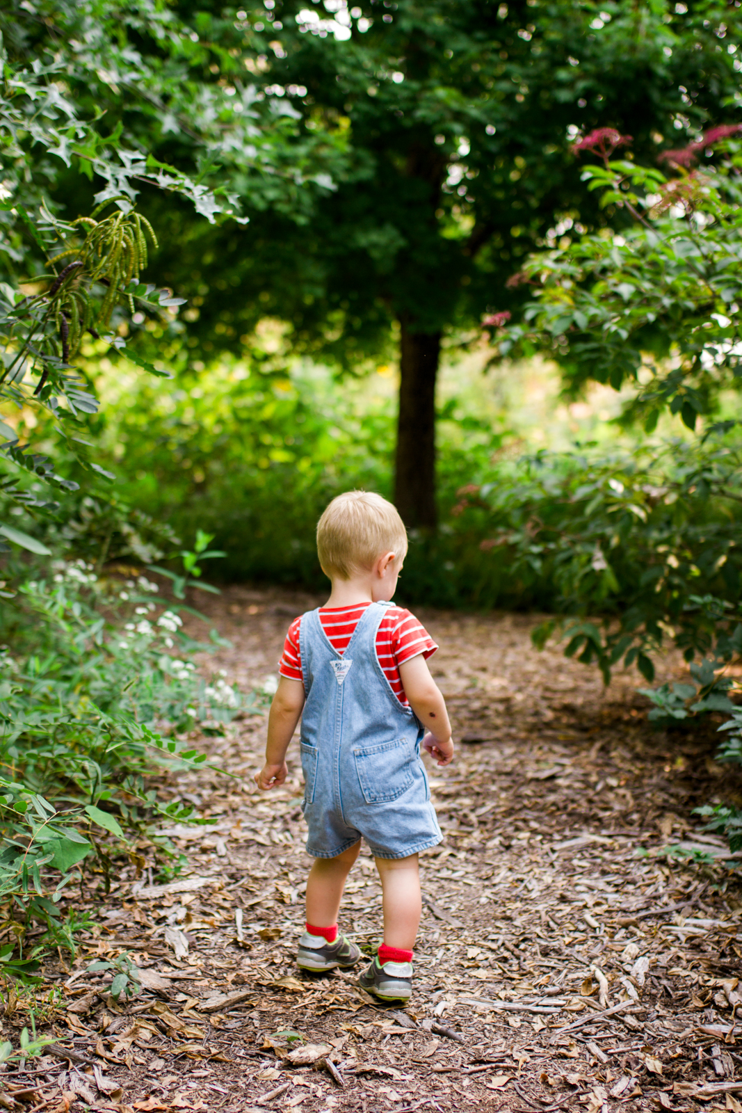 Rebecca Clair Photography Kansas City lifestyle photographer, fall mini session, fall family photos, boy walking through the woods