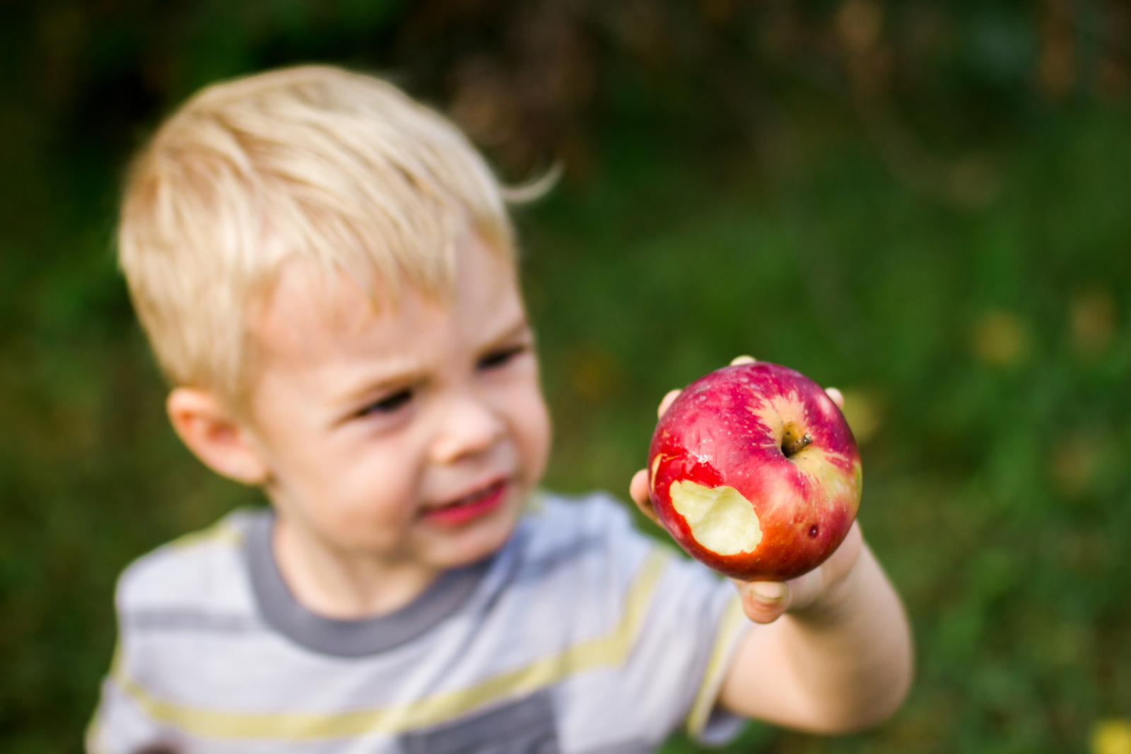 Rebecca Clair Photography, Kansas City lifestyle photographer, apple picking photo session, apple orchard photos, Kansas City family photographer, boy holding apple