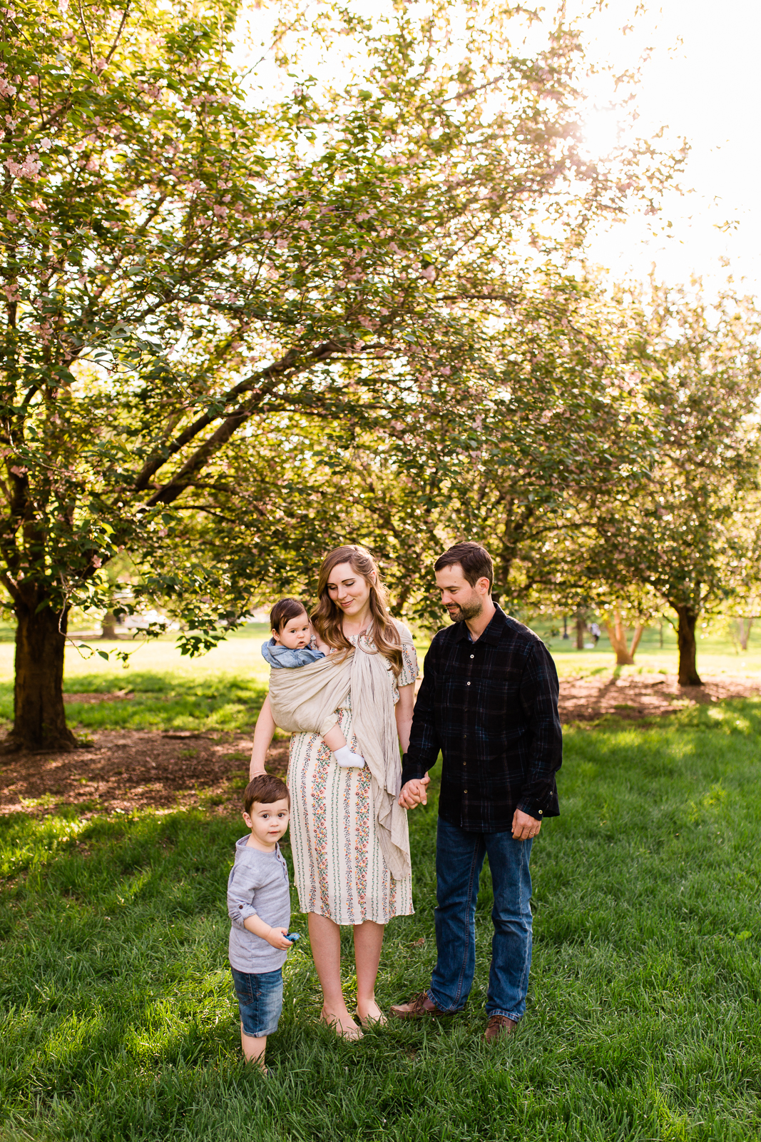 Family photos at Loose Park under the flowering trees, Kansas City family photographer, Rebecca Clair photography