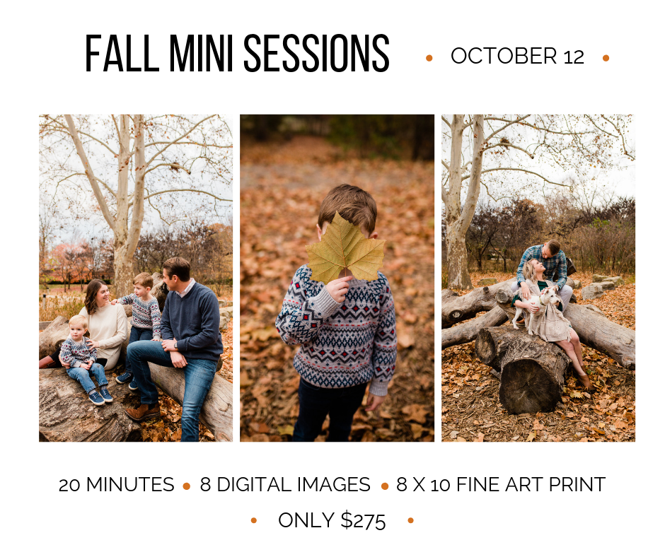 Rebecca Clair Photography, Kansas City Fall Mini Sessions, October Mini Sessions.png