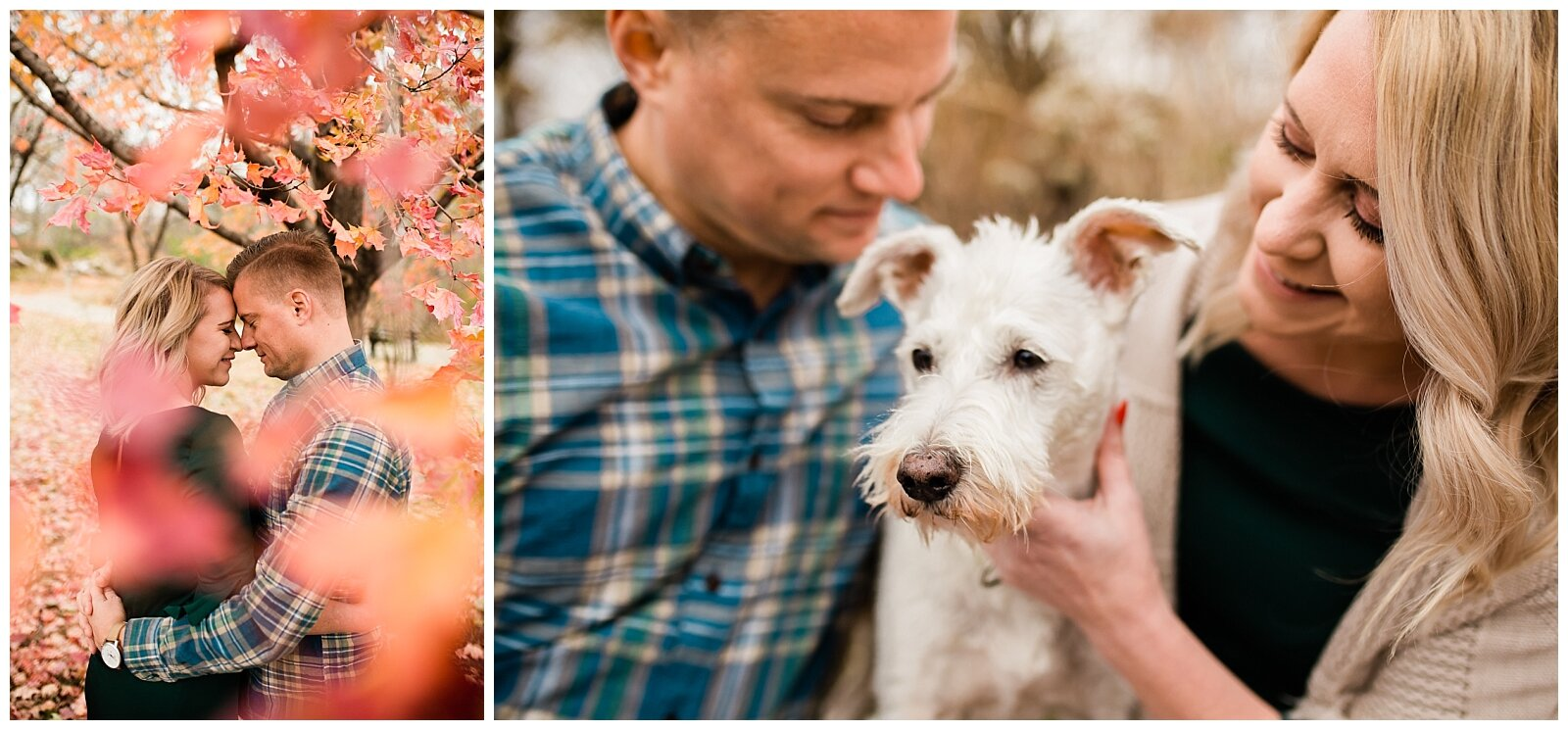 A couple embraces nose to nose under a red autumn tree, Kansas City engagment and couples photographer, Rebecca Clair Photography