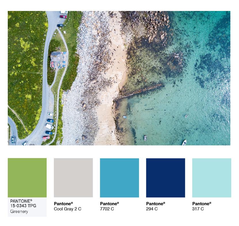 color-palette-tropical.jpg