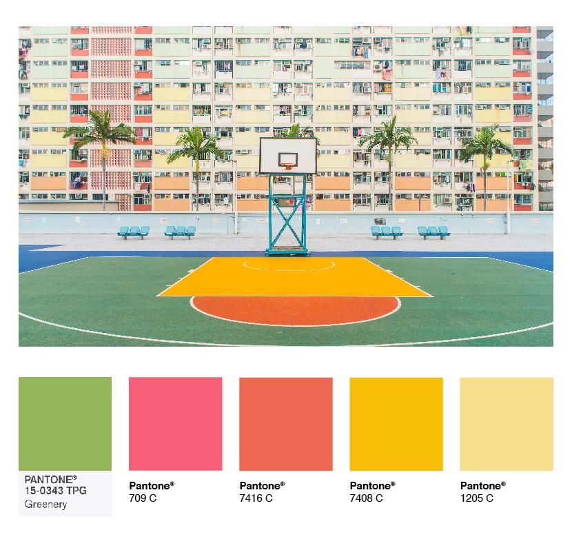 color-palette-basketball.jpg