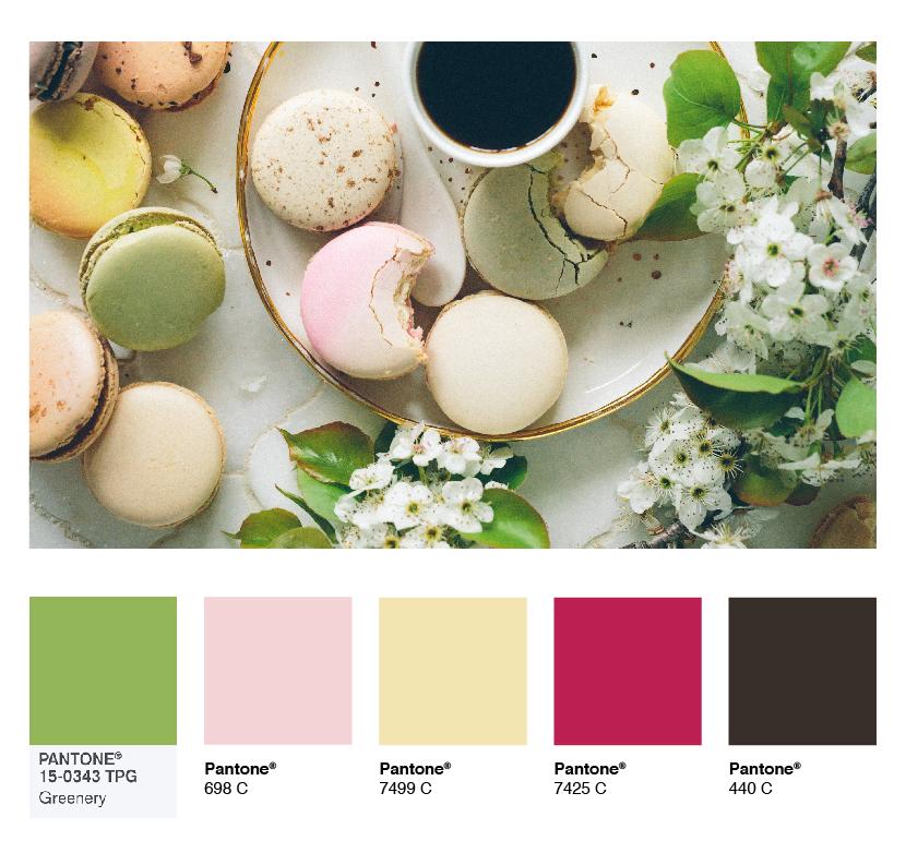 color-palette-macaroons.jpg