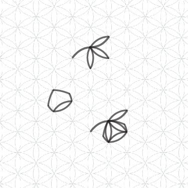 zome-logo-design.jpg
