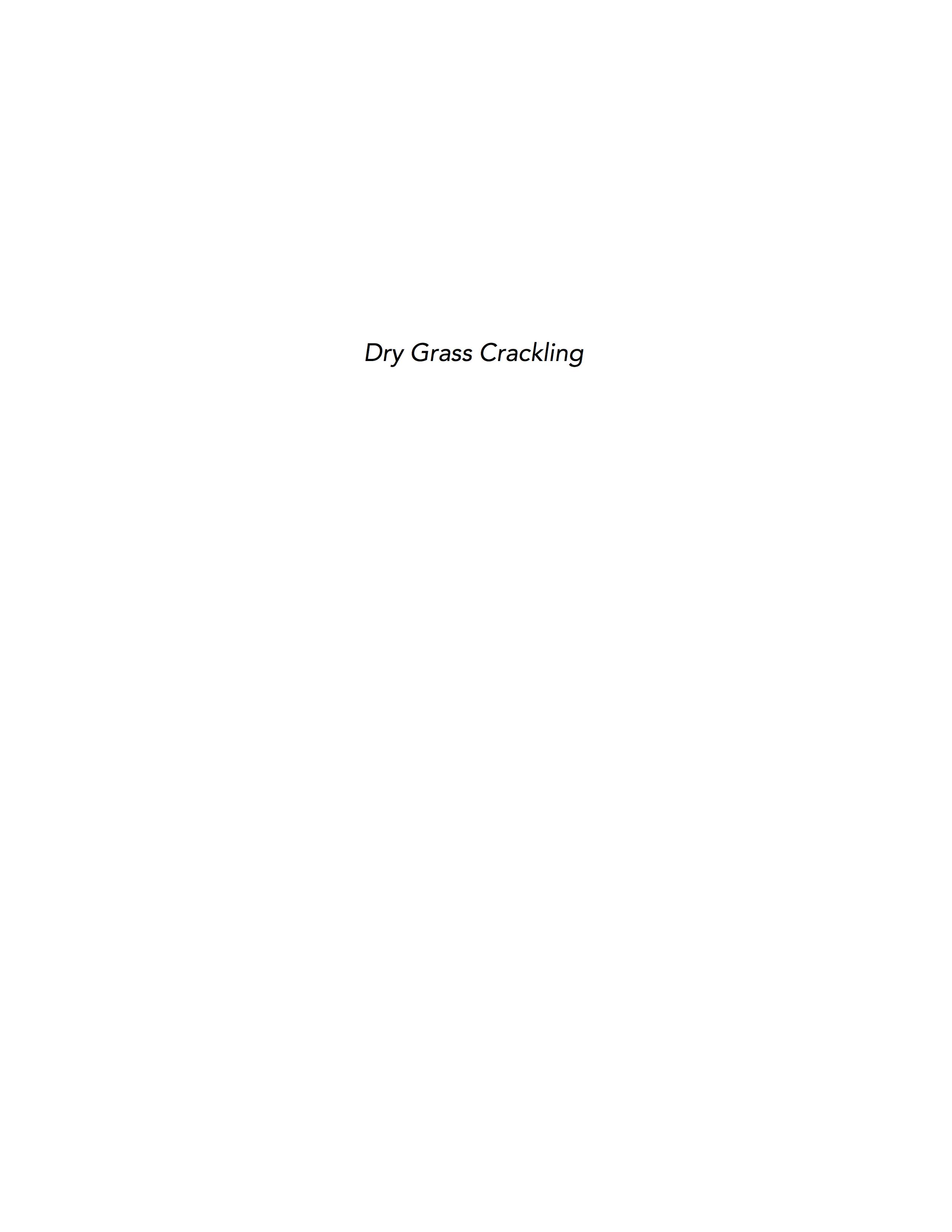Vivian Ewing_Dry Grass Crackling_JPEGS.jpg