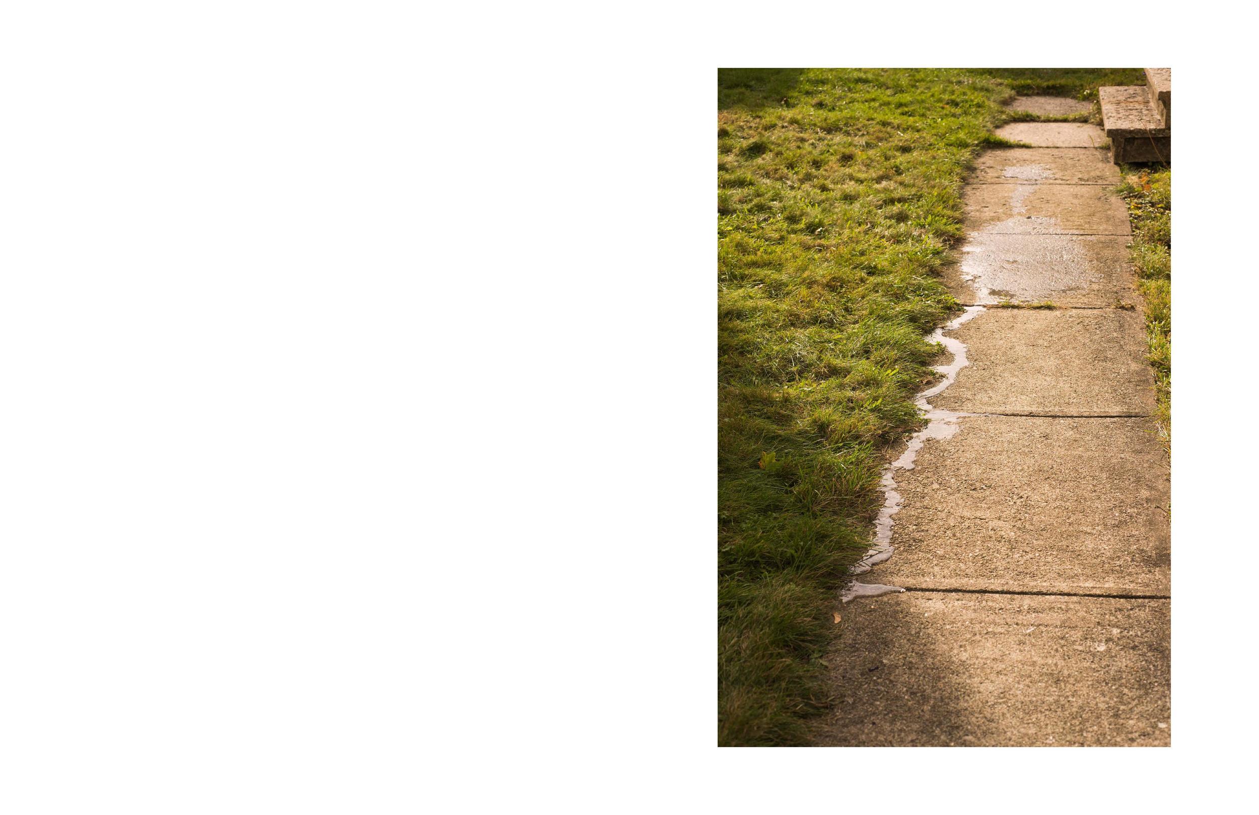 Vivian Ewing_Dry Grass Crackling-page-007.jpg