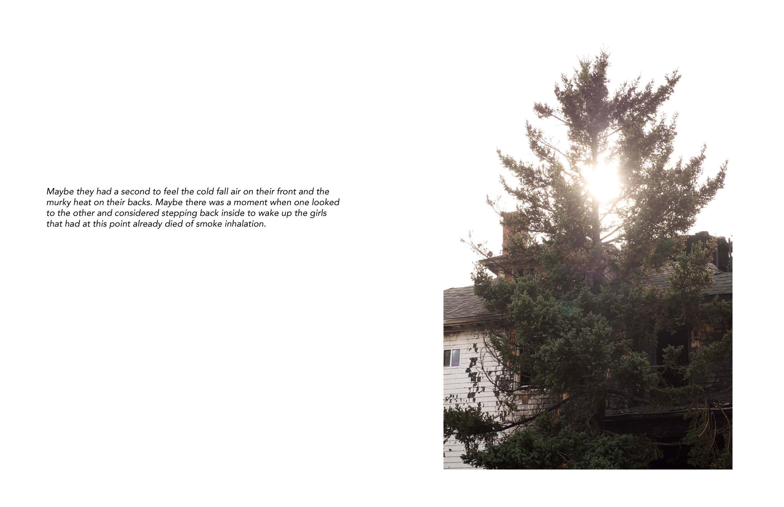 Vivian Ewing_Dry Grass Crackling-page-009.jpg