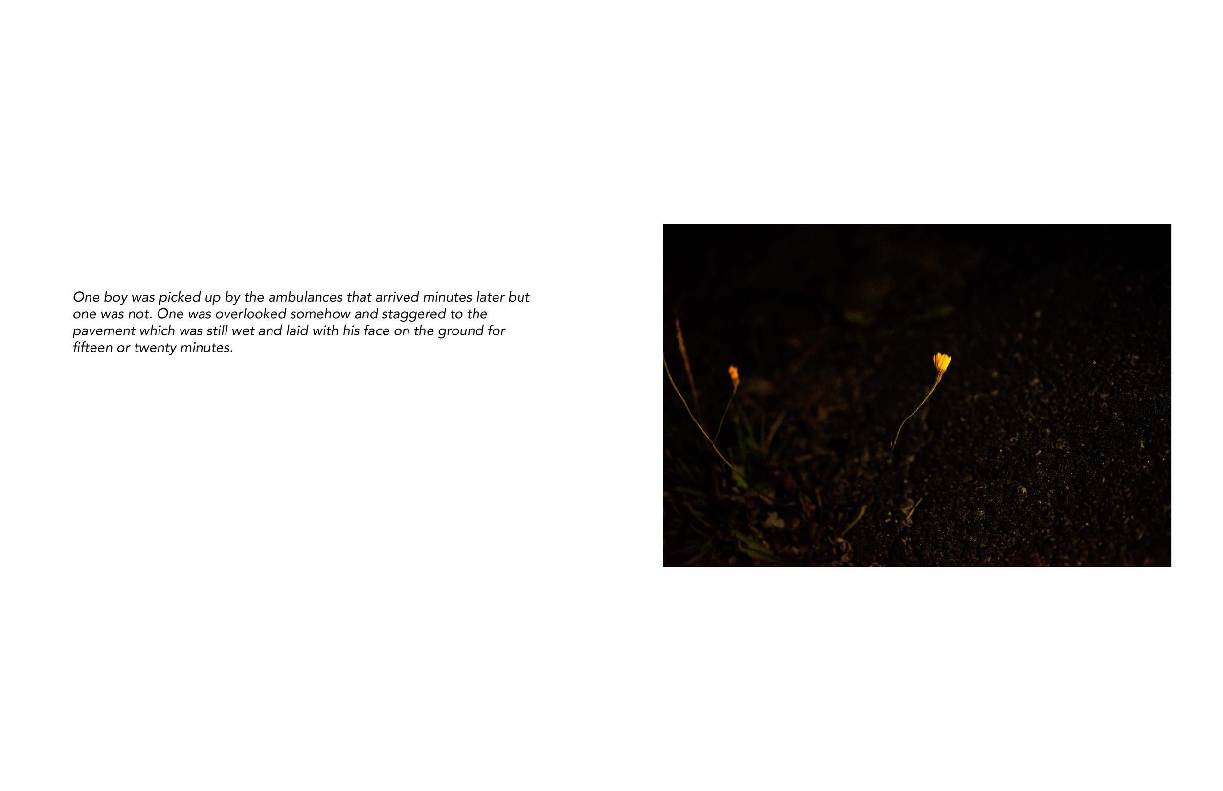 Vivian Ewing_Dry Grass Crackling-page-011.jpg
