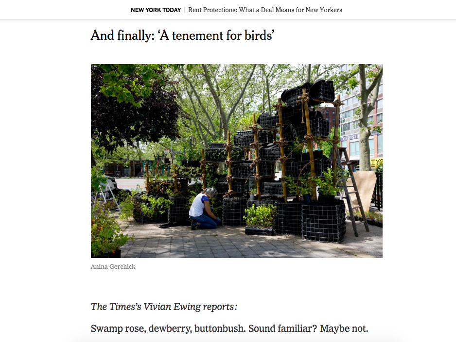 And finally: 'A tenement for birds' - The New York Times