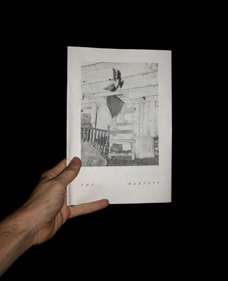 The Harvest - Short story for Wilt Press