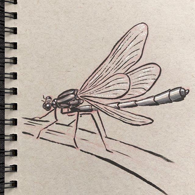 #inktober day 11. Today's theme was dragon 🐉 dragonfly's are neat 🧚🏻♂️ • • • • #inktober2019 #ink #pen #penandink #posca #copic #blackandwhite #tonedpaper #drawingoftheday #illustration #art #sketch #instaart #artweinspire #artistoninstagram #instaartwork #drawing #inktoberprompts #dragon #dragonfly #dragonflydrawing #dragonflys