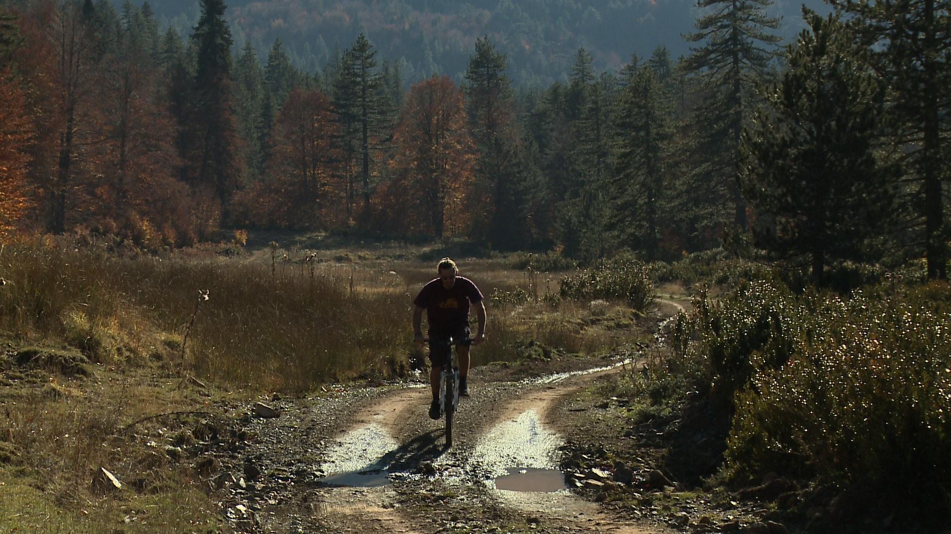 activities_bike.jpg