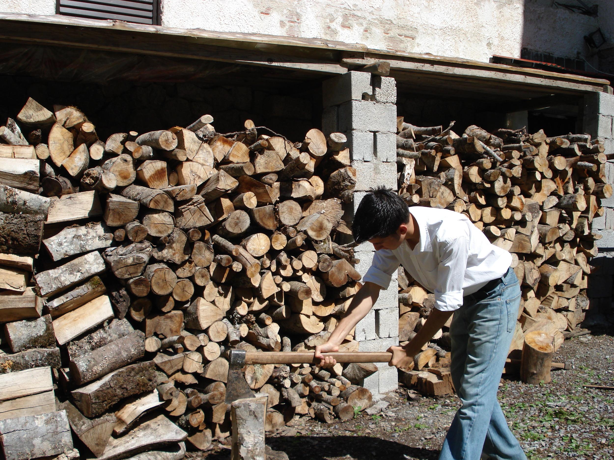 hotel_cutting_wood.jpg