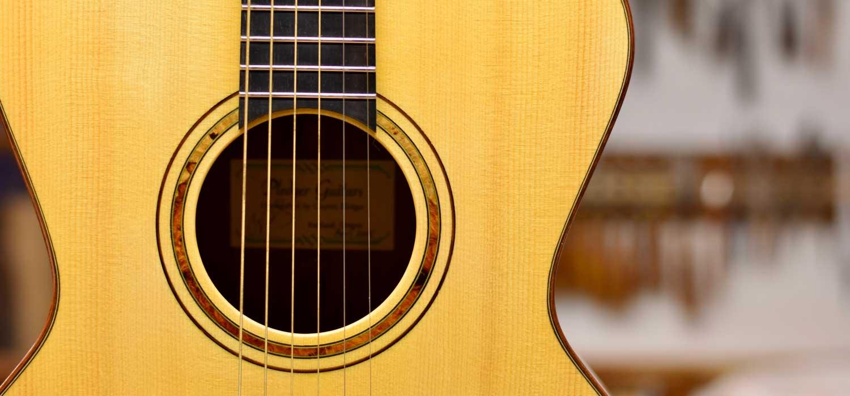 pledger-guitars-body-view-m1.jpg