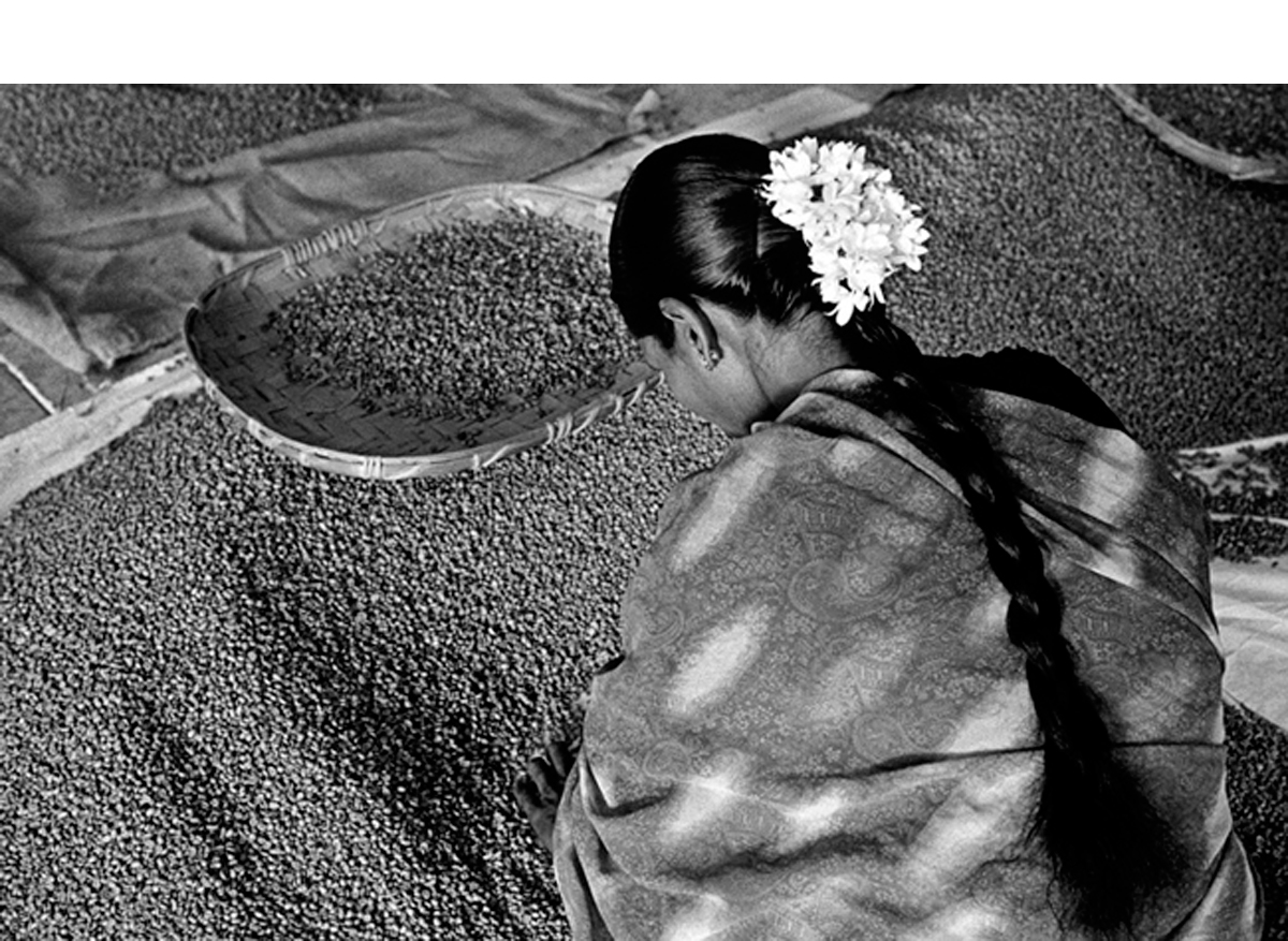 India [woman with flowers in her hair], 2003/Printed 2007   20 x 24 inches.  Gelatin silver print