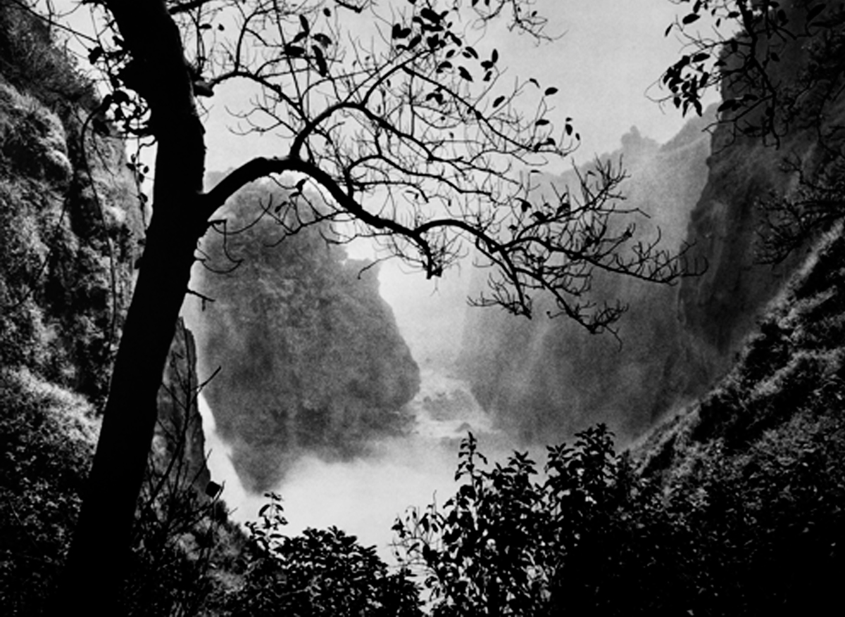 Victoria Falls with Tree, Zimbabwe, 2008  20 x 24 inches  Gelatin silver print