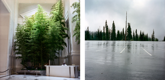 Lobby with Trees, 2003    Paradise Parking, Mt. Rainer, 2000   18.5 x 18.5 inches  Archival pigment print, ed. 10